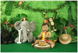 Safari Smash Cake Photos