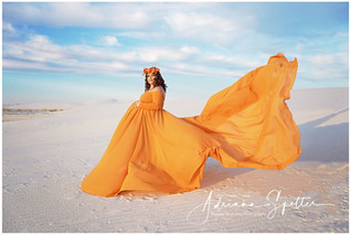 Gold Long Sleeved Long Train Maternity Gown