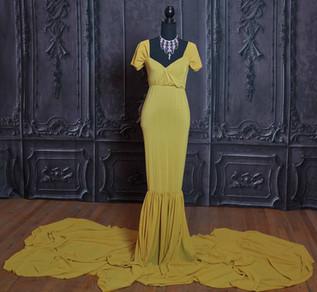 Dijon Long Tail Maternity Gown