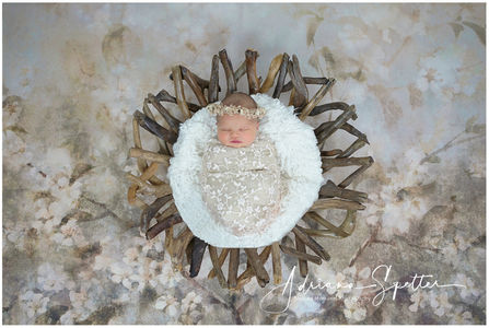 Alamogordo Newborn Photos