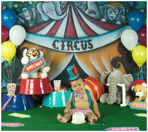 Circus Smash Cake Photos