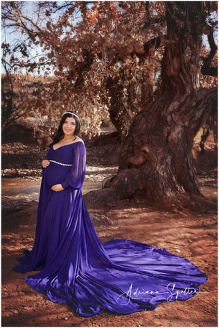 Blueberry Maternity Gown