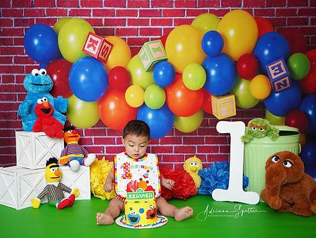 Sesame Street backdrop.jpg