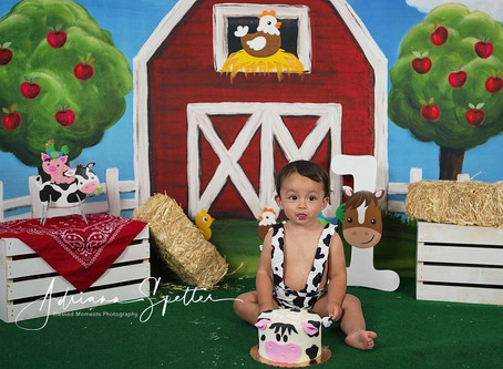 Smash Cake - Aiden - Home on the farm