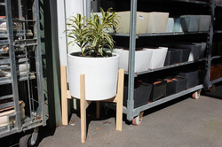 Wood Pot Stand