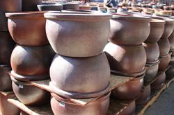 Low Belly Pot