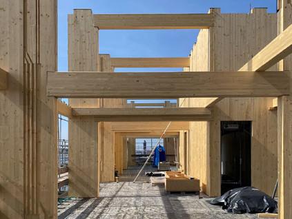 Hoogste punt van Nederland's eerste houten hoogbouw bereikt!