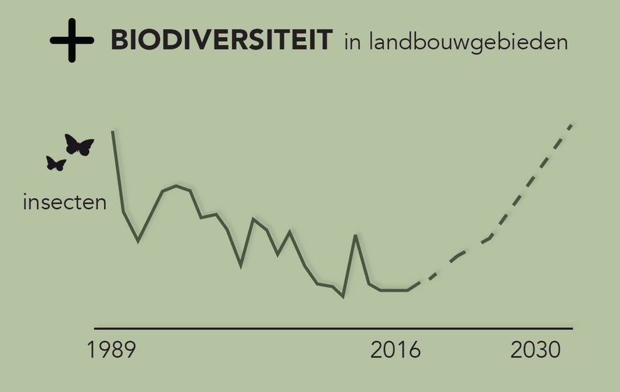 Groundbreaking research: optimizing the positive influence of solar parks on biodiversity