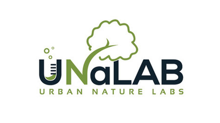 Nature-Based Solutions voor Eindhoven