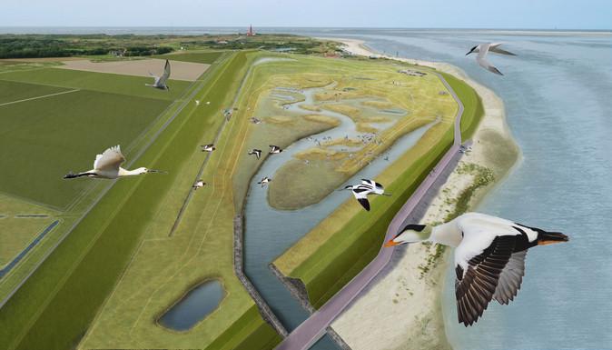 Wervend toekomstperspectief Polder Wassenaar Texel