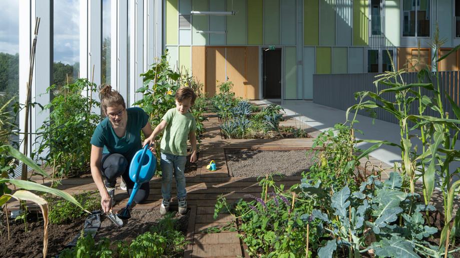 Zuiderkerkprijs voor woningbouwproject New West!