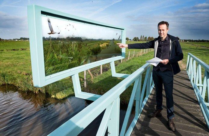 Wetland park Marickenland in AD: Lisdodde is een gewas met potentie!