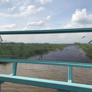 Inspirerende start wetlandpark Marickenland!