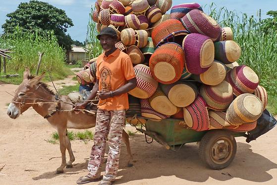 Man transporting basket on a donkey