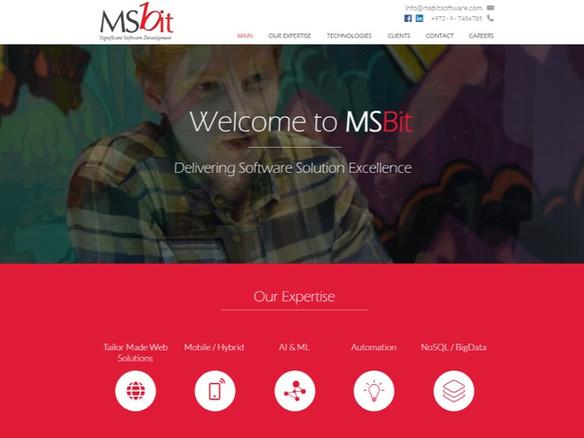 MSbit - פיתוח תוכנה