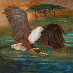 African Fisheagle