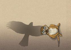 Meerkat Bl14-15