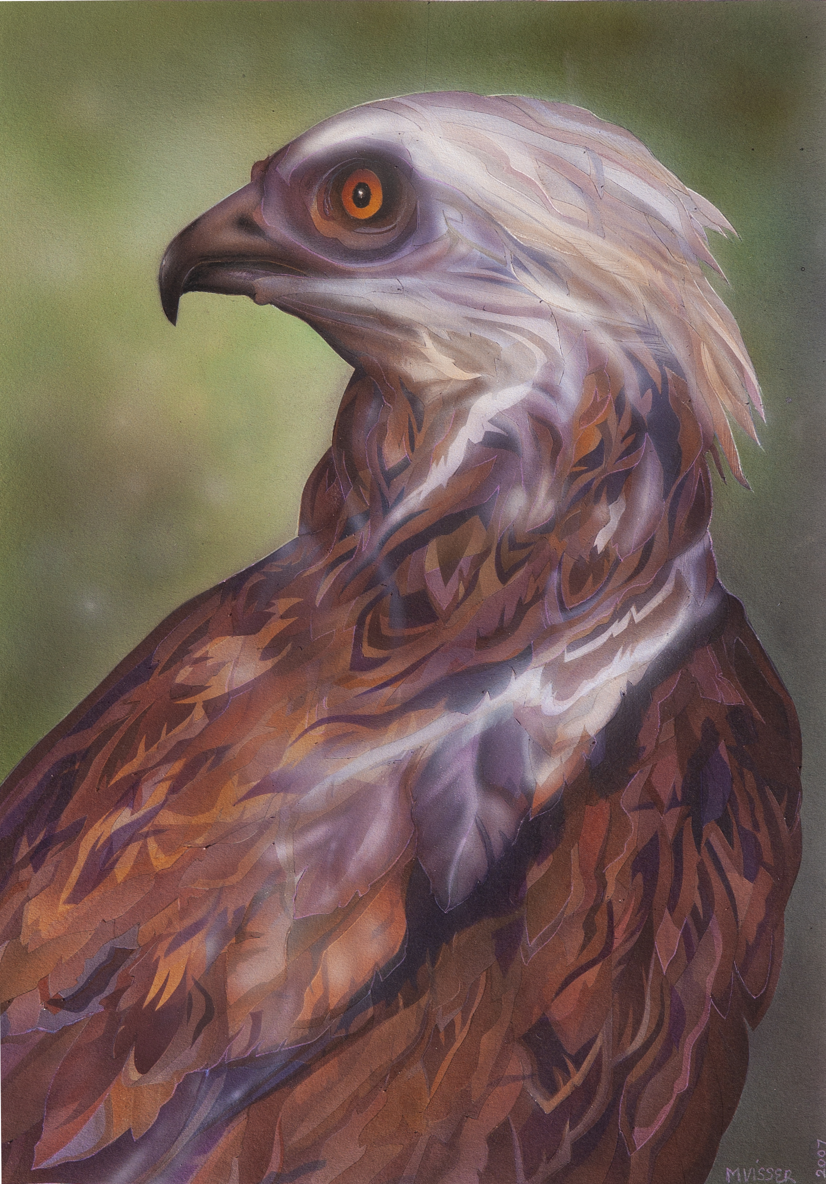 Face of an Eagle3