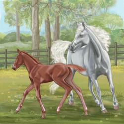 Horse&foul
