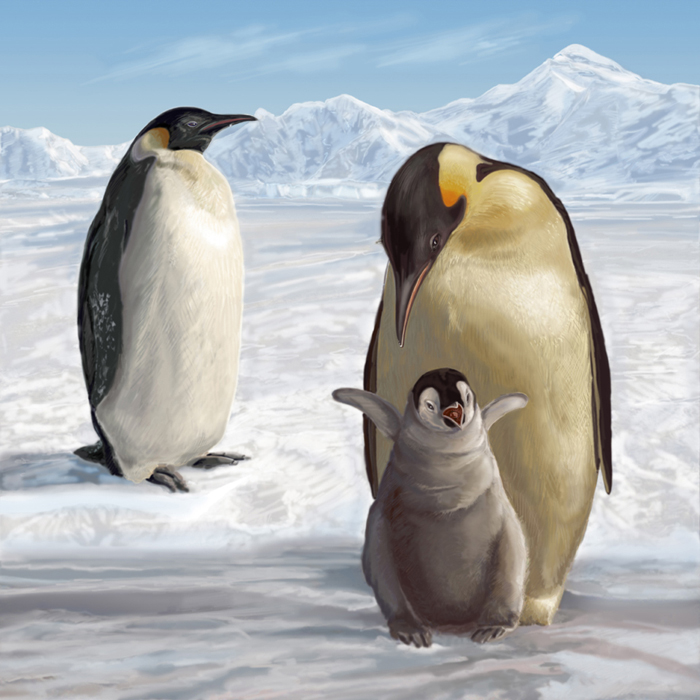 Penguins Puzzle illustration