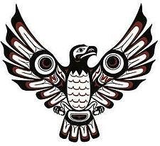 eagle national indigenous.jpg