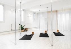 Pole dance pole sport cours lausanne chrome studio (50).jpg