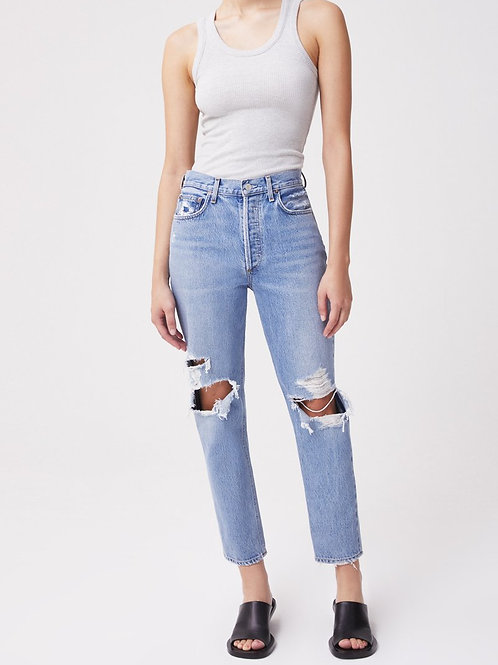 AGOLDE Fen High Rise Relaxed Tapered Jean in Wander