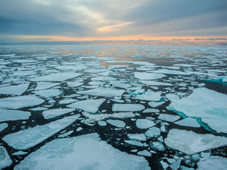 Ice-Breaker: Get to Know the Melting Arctic Sea Ice