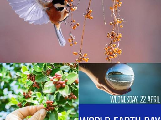 Abril 22 , Día de la Tierra