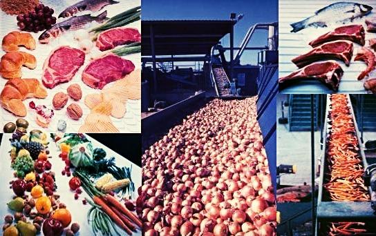 Lebensmittel-Industrie