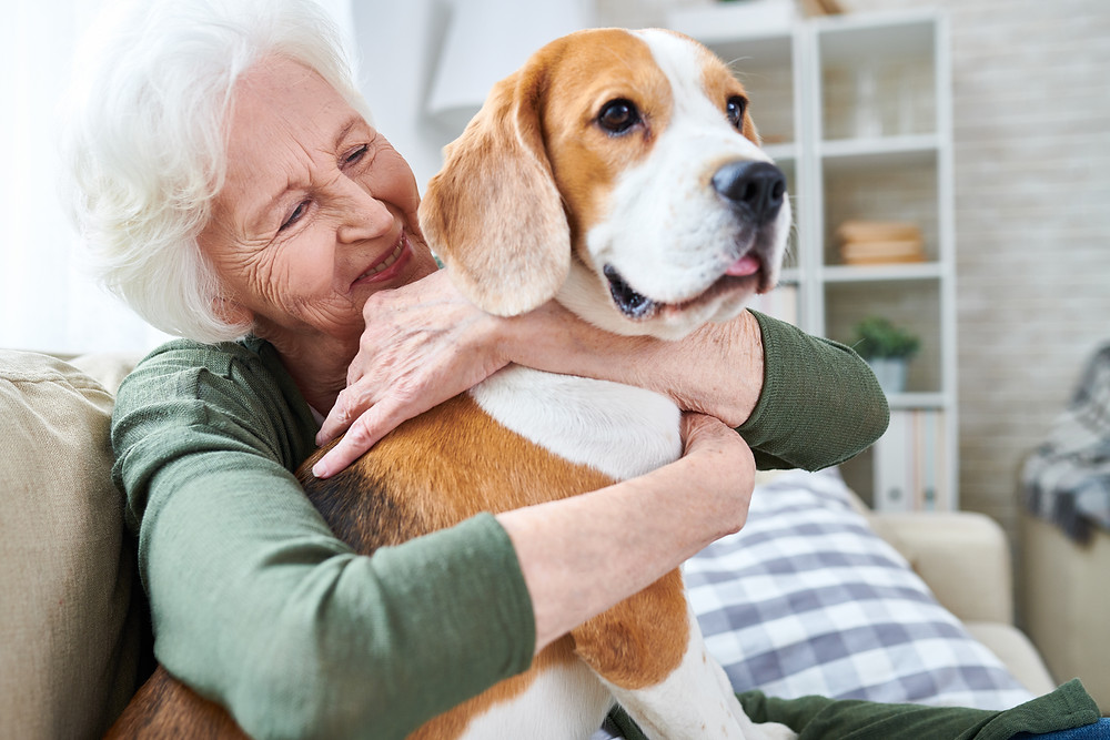 aged woman with dog aged care transition