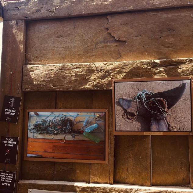 Exhibición_de_arte__Mar_Limpio__-_Tarifa