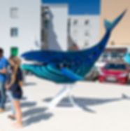 Tarifa Plastic Free Eco Whale Nereide