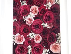 『RC white flower carpet』