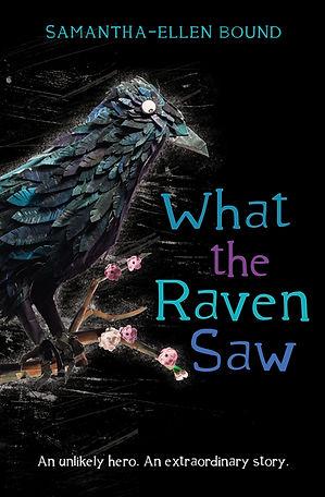 what raven saw.jpg