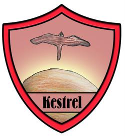 Kestrel House