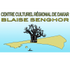logo Blaise (1)-lw-scaled.jpg.png