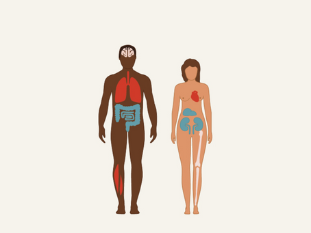 5 Mind-Blowing Facts About the Human Body