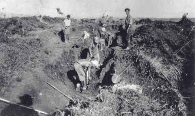 Jezreel-Tal 1902