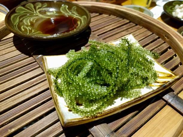Umibudo raisin de mer japonais cuisine