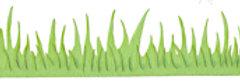 #368 Green Grass