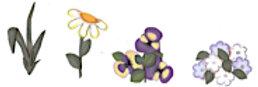 #431 Wild Flowers