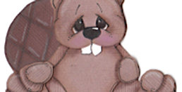 #397 Beaver