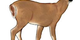 #977 Deer