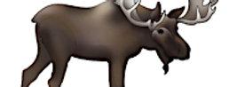 #1016  Moose