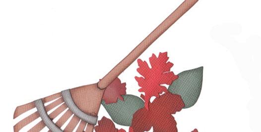 #264 Leaf Rake