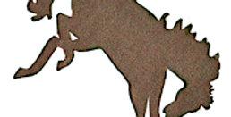 #688 Shadow Horse