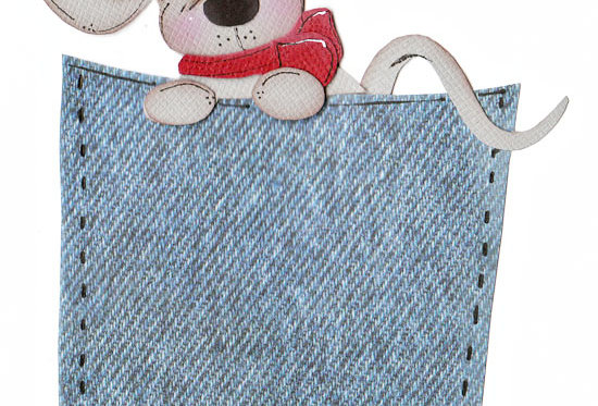#581 Mouse in Pocket