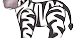 #93 Zebra