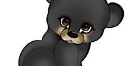 #951 Bear Cub